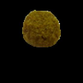 BIO SENIOR + Tomatoes